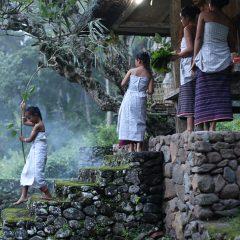 Bulan pertama kalender Desa Tenganan 2014 – Upacara Usaba Kasa